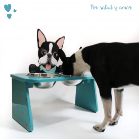 Comedero Bebedero Boston Elevado Doble Azul Mandi Pets